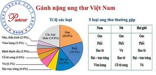 Tỉ lệ ung thư tại Việt Nam