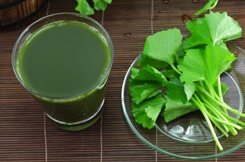 bài thuốc đông y trị bệnh từ rau má