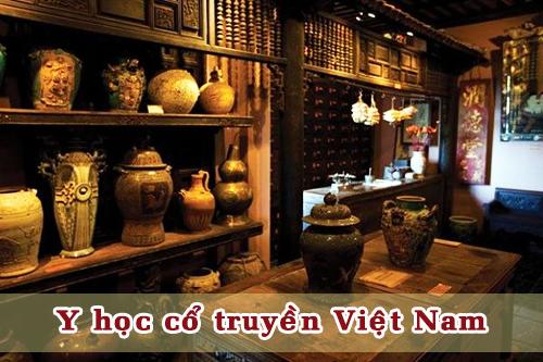 y-hoc-co-truyen-viet-nam