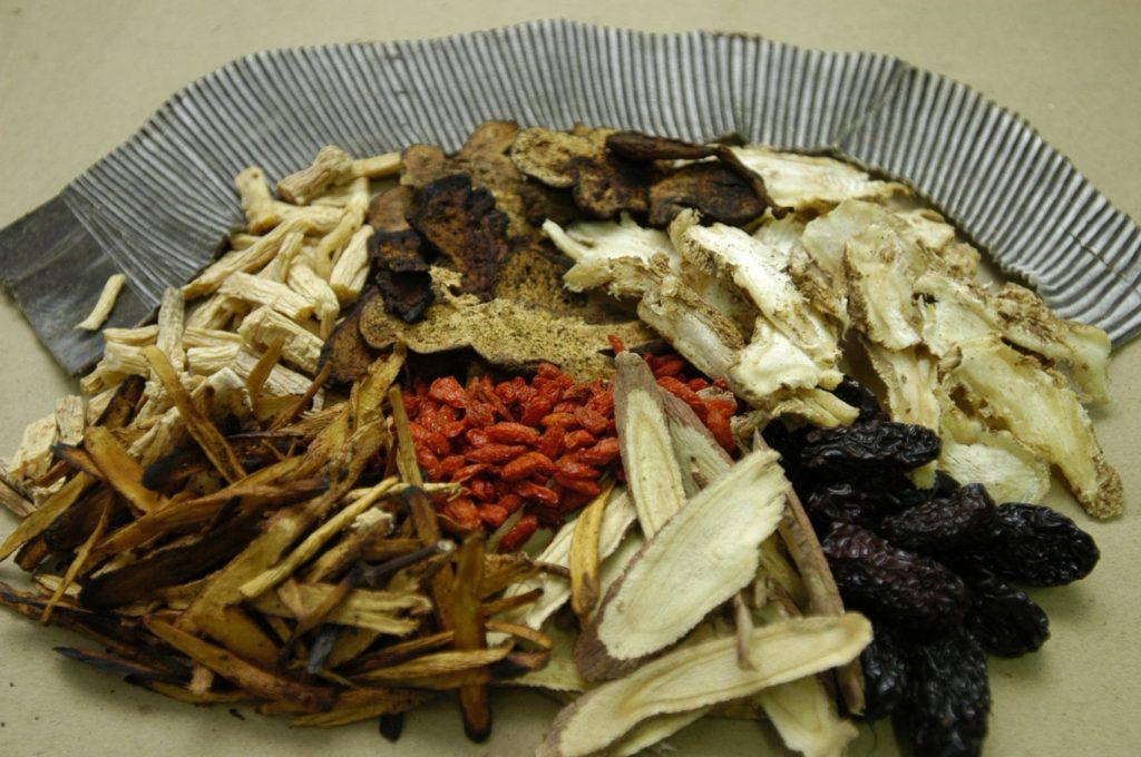 thuoc-dong-y-tri-tung-loai-benh-dau-lung(1)