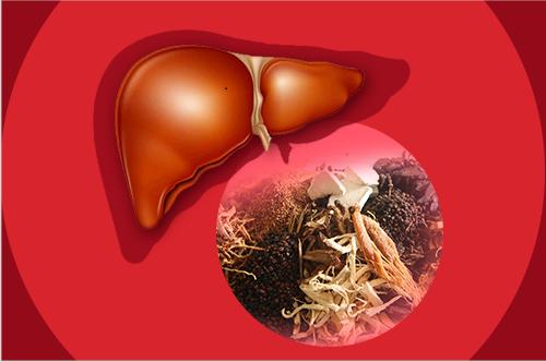 Lưu ý khi sử dụng dược phẩm cho người bệnh gan