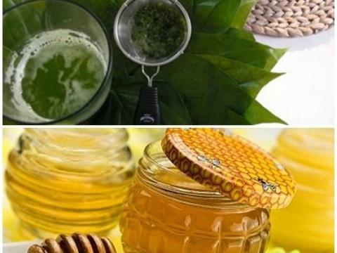 Lá trầu không kết hợp mật ong trị ho hiệu quả