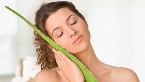 Nha đam giúp dưỡng tóc mềm mượt