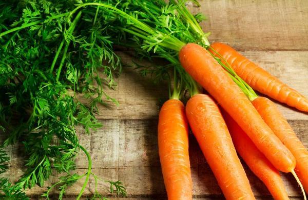Cà rốt chứa hàm lượng cao các chất dinh dưỡng