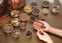 Điều trị đau dạ dày hiệu quả bằng thuốc Đông y