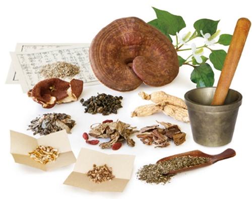 Các bài thuốc y học cổ truyền chữa bệnh đau nhức xương khớp